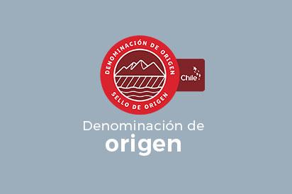 D-Origen