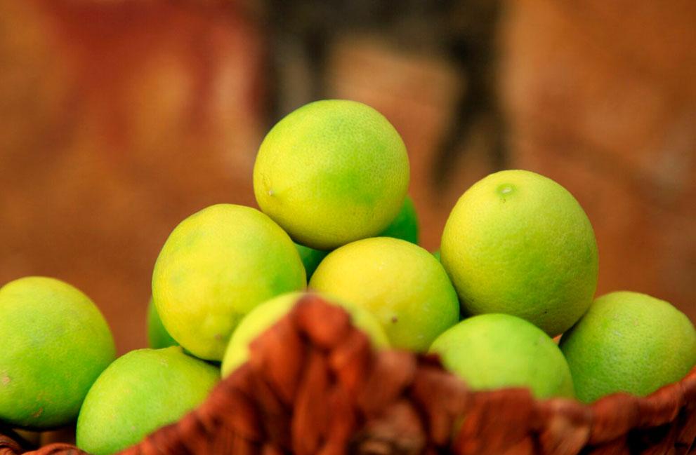 galeria-limon-de-pica-1