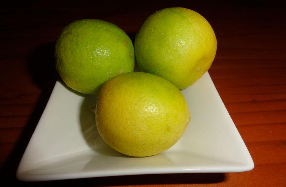 galeria-limon-de-pica-2