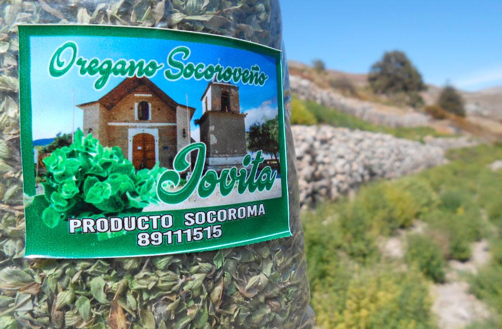 Oregano-3-Jova-Bernabe